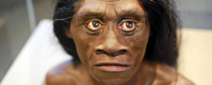 Mujer de Homo floresiensis.